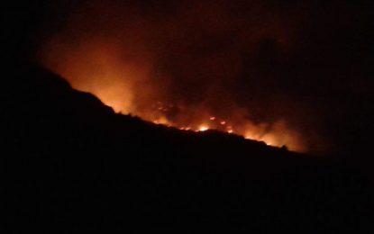 Incendies à Jebel Serj : Une grande partie des flammes maîtrisée (Photos)