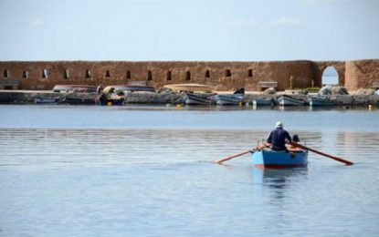 Les jeunes de Ghar El Melh et Bizerte appelés à développer des projets verts