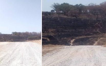 Maire de Raoued : «Les incendies dans la forêt de Sidi Amor sont provoqués par les lobbies de la  construction illégale»