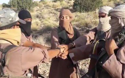 Vidéo des jihadistes présentée comme filmée en Tunisie : Et si «France TV Info» s'est laissée manipuler ?