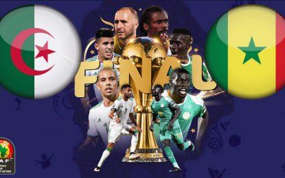 Algérie-Sénégal en live streaming : Finale CAN 2019