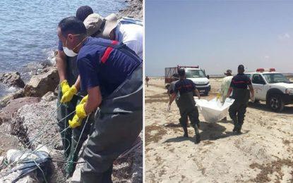 Migration clandestine : Près de 80 corps repêchés à Zarzis et Djerba