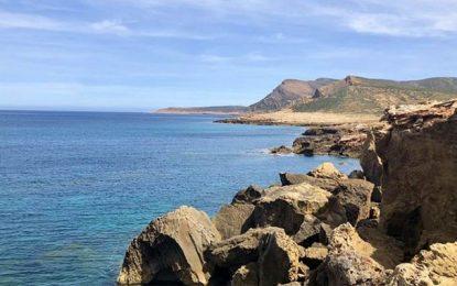 Environnement : El Haouaria, un «petit paradis à préserver»