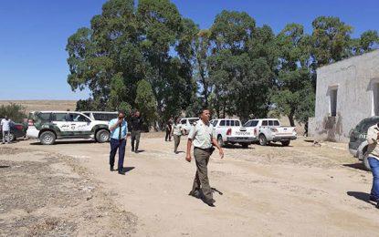 Zaghouan : L'Etat récupère 98 hectares de terrains domaniaux illégalement exploités