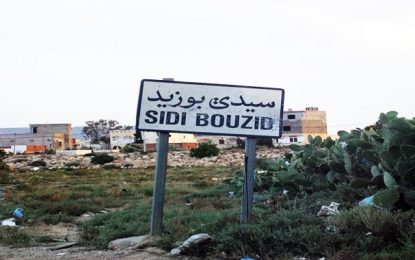 Des pistes innovantes pour développer les régions de l'intérieur en Tunisie