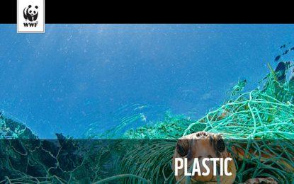 Le plastique coûte  20 millions de dollars par an à la Tunisie