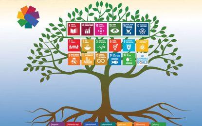 Expo 2020 Dubai: sélection de 25 projets dont le SDG Camps de Tunisie