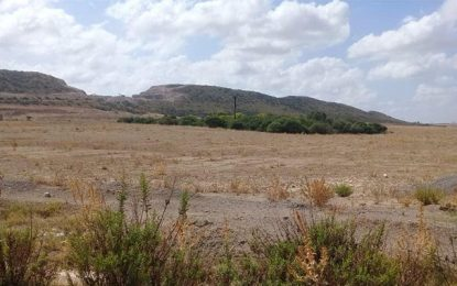 Tunisie : L'Etat récupère de 36 ha de terrains domaniaux illégalement exploités
