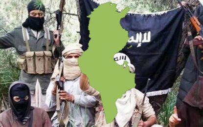 Etude : La répartition géographique de l'origine des terroristes en Tunisie
