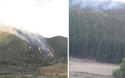 Béja : Incendies à Jebel Sidi Ahmed et à Jebel Aïn Belouine (Photos)