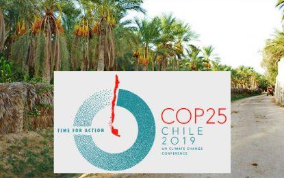 La Tunisie proposera la protection des oasis à la COP25, en décembre 2019, au Chili