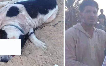 Décès d'un père de famille attaqué par un chien à El-Faouar : Les habitants appellent les autorités à intervenir