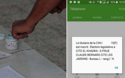 Isie : Bug du service *195*CIN# permettant aux électeurs de vérifier leur inscription