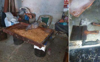 Jebel Jelloud : Fermeture d'un entrepôt où l'on préparait du kaki dans des conditions d'hygiène déplorables (Photos)