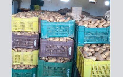 Spéculation : Saisie de 80 tonnes de pommes de terre à Menzel Jemil