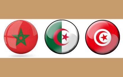 L'Algérie décide d'annuler ses stages universitaires en destination de la Tunisie et du Maroc