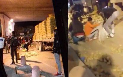 Sousse : Des citoyens volent des pommes de terre tombées… d'un camion qui a dérapé (vidéo)