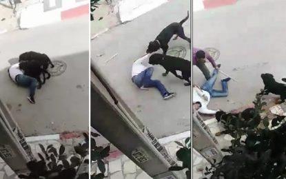 Ezzahra : Attaqué par deux chiens, un homme sauvé in extremis par les habitants du quartier (Vidéo)