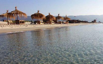 Projet Gemwet : 150 nasses à crabe bleu aux pêcheurs de la lagune de Ghar El Melh