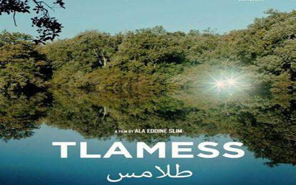 Le film tunisien «Tlamess» remporte le Prix de la mise en scène au Festival de Marrakech 2019