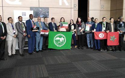 Le palmier dattier de la Tunisie et de 13 autres pays arabes inscrit au patrimoine immatériel de l'Unesco