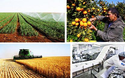 Les investissements agricoles approuvés ont baissé de 26,5% durant les 11 premiers mois 2019