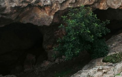 Une jeune fille récupérée du fond d'une grotte à Jebel Zaghouan