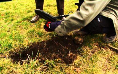 Kébili : Trois «chercheurs de trésors» arrêtés en possession d'objets d'antiquités