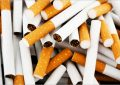 Tataouine : saisie de 32.000 paquets de cigarettes de contrebande