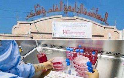 Bientôt, un service de greffe de cellules souches du sang à l'hôpital universitaire Hédi Chaker de Sfax