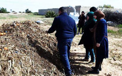 Djerba Ajim : nouvelle expérience pour convertir les déchets du marché hebdomadaire en engrais