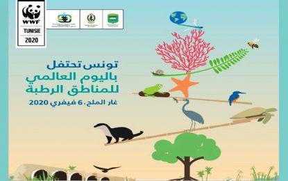 Tunisie : Ghar El Melh abritera la Journée mondiale des zones humides