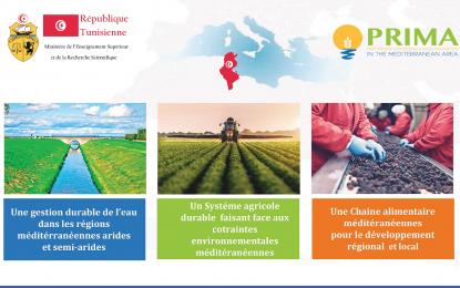 Lancement des appels du Partenariat dans les R&I en Méditerranée
