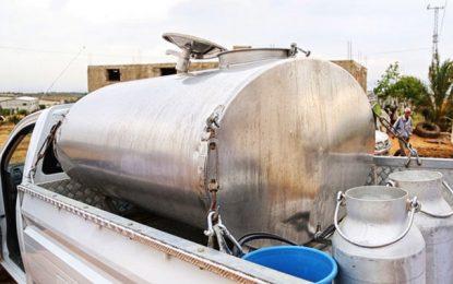 Zaghouan : Appel à créer des centres de collecte de lait