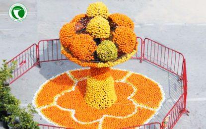 Les fête des agrumes à Hammamet : «La Maltaise, reine des oranges»