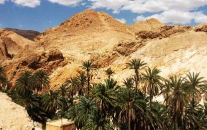 Tunisie : La construction d'un village cinématographique va démarrer en mars 2020 à Nefta