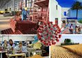 Covid-19 – Tunisie : Les entreprises dans la tourmente de la crise sanitaire