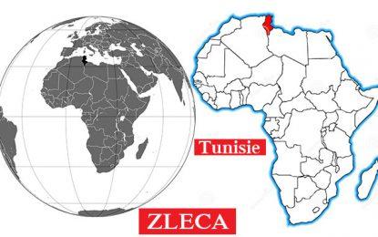 La convention sur la Zleca pourrait être adoptée dans les délais !