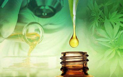 Anxiété et huile de CBD : ce que vous devez savoir