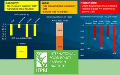 IFPRI : La Tunisie doit rouvrir rapidement son économie pour réduire ses pertes de revenus et d'emplois