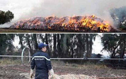 Jendouba : L'incendie dans une ferme à Bousalem serait accidentel