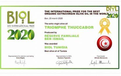 Huile d'olive bio : La marque tunisienne Triomphe Thuccabor, décroche le prix international Biolterritori