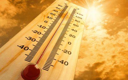 Tunisie : Forte augmentation des températures ce jeudi