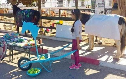 Open Green School à Mahdia pour apprendre autrement