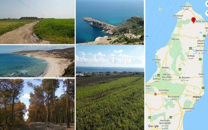Tunisie : Arrêtons de massacrer le Cap Bon !