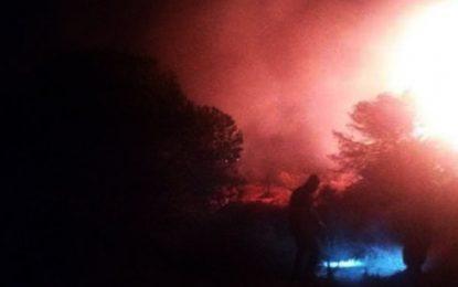 Bizerte : La protection vient à bout de l'incendie au mont Nadhour