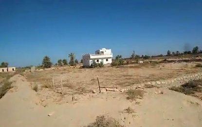 L'affaire des chiens errants à Djerba : À qui profite le crime ?