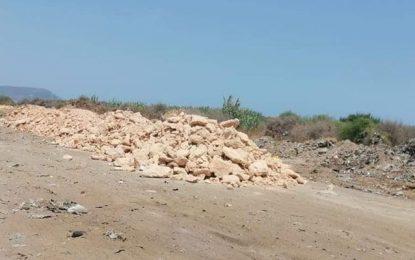 Le maire de Dar Allouche commet un désastre écologique à Kerkouane
