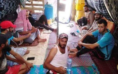 El-Kamour : le sabotage se poursuivra cet hiver, Saïed aux abonnés absents