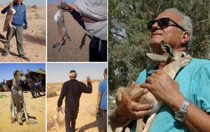 «La mort du Sahara !», énième cri d'alarme d'Abdelmajid Dabbar sur le braconnage dans le sud tunisien